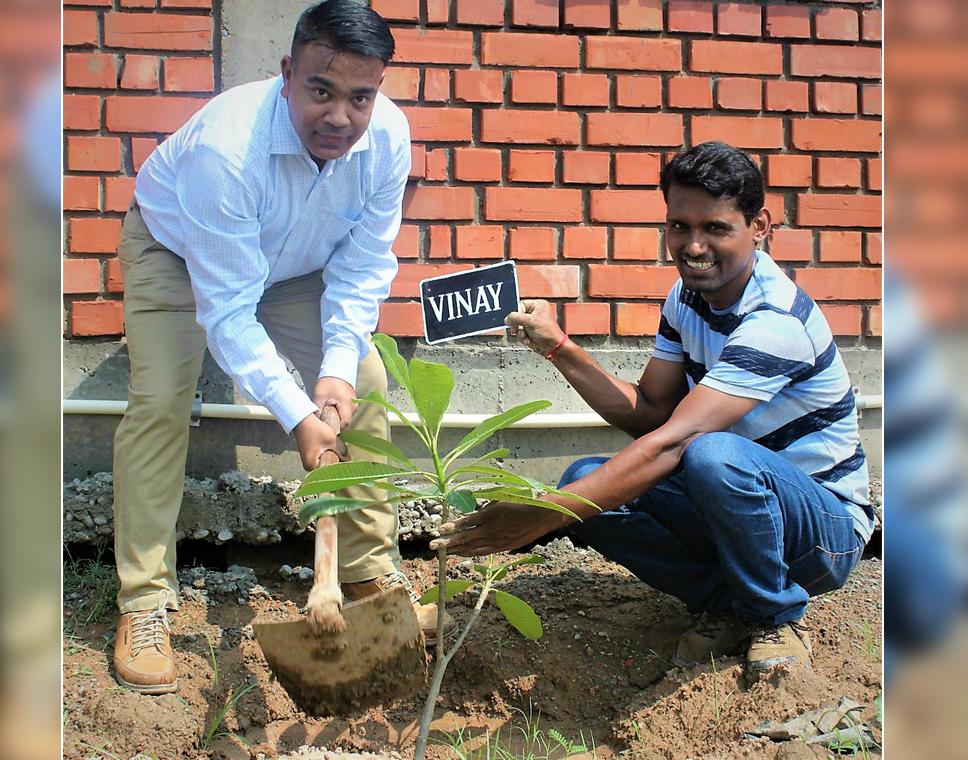 tree-plantation-at-smartData-new-facility-at-mohali